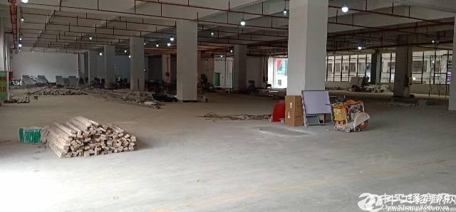 横岗新出高新产业园独院4200平,出租带红本,消防喷淋