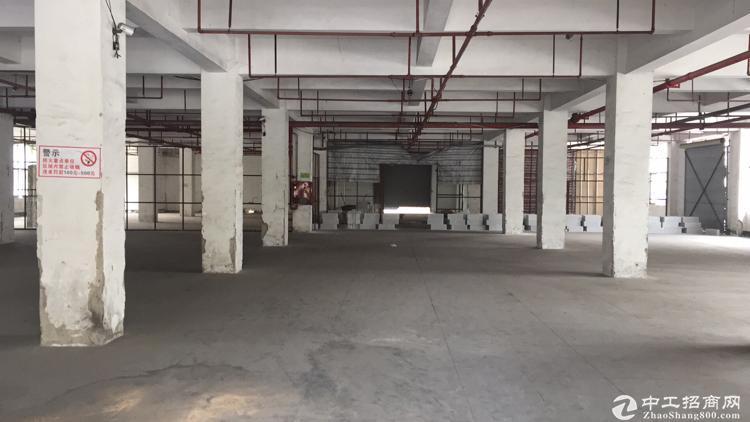 龙华中华路现出1楼物流厂房1600平,价格优惠最低500平分