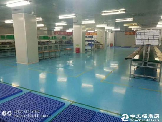 平湖华南城楼上2300平可分租适合做电子电商仓库服装