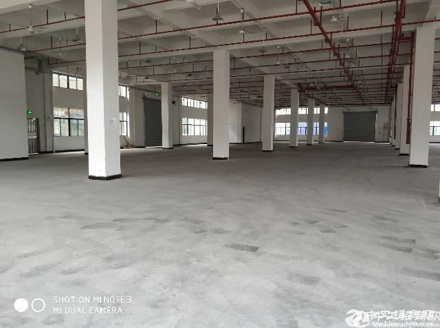 惠阳新圩镇高布隆工业园内1650平方厂房出租一二楼大小可分租