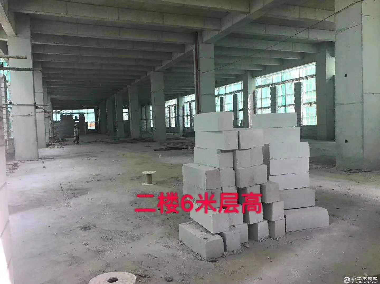常平一手红本厂房首付5层 产权分割300平起