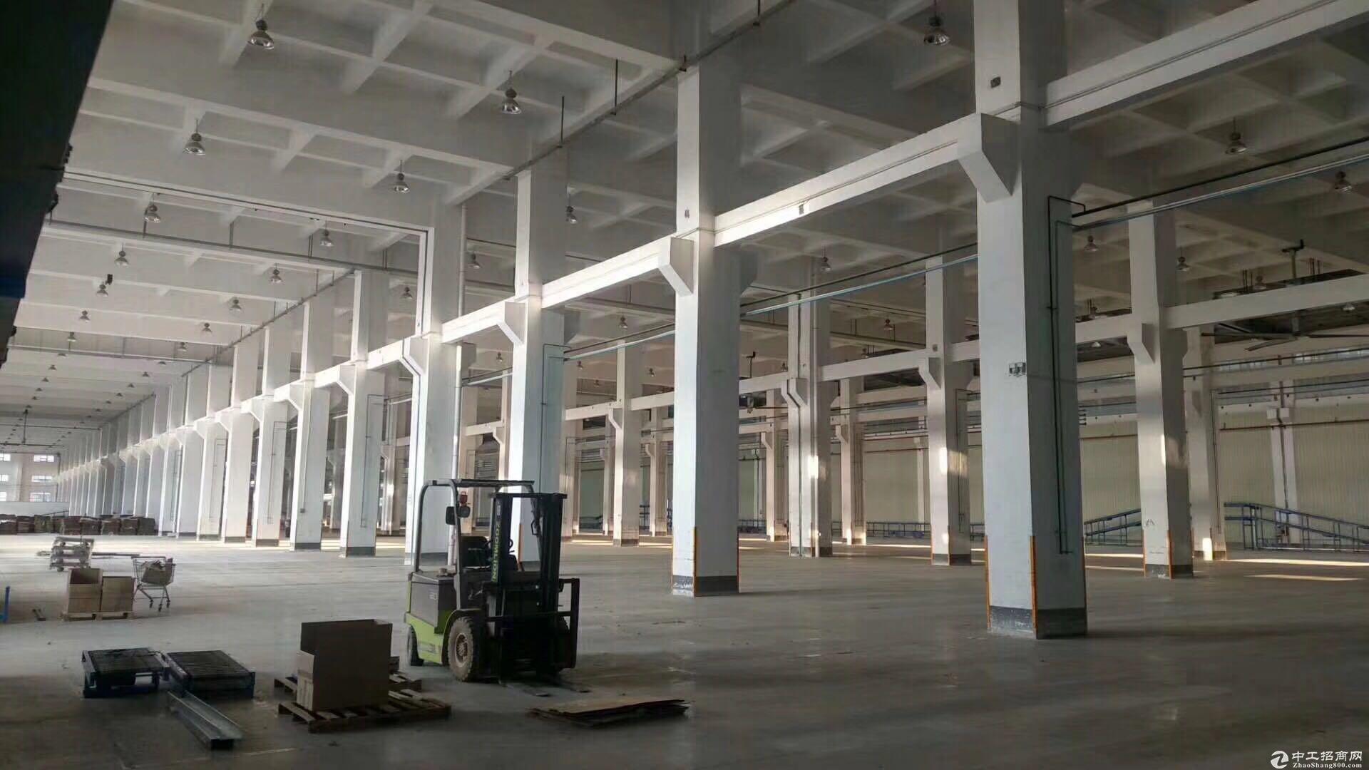 坪山坑梓15米高2万平原房东钢构厂房出租可分租