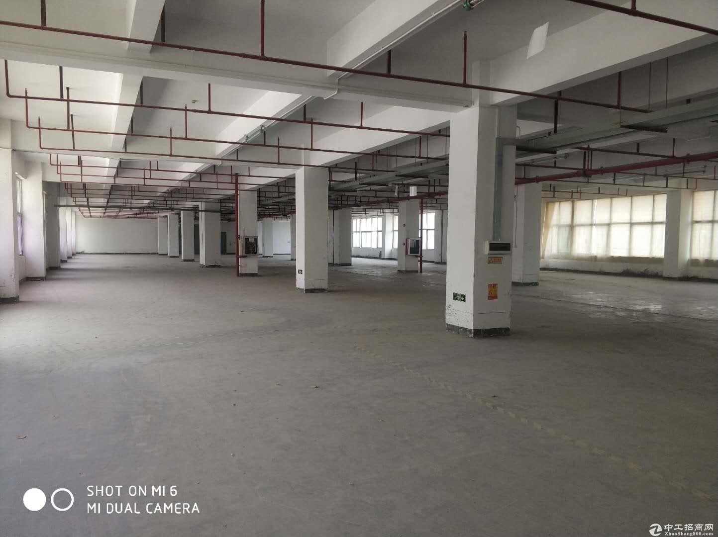 横岗四联新出厂房1500价格便宜。离高速路口近
