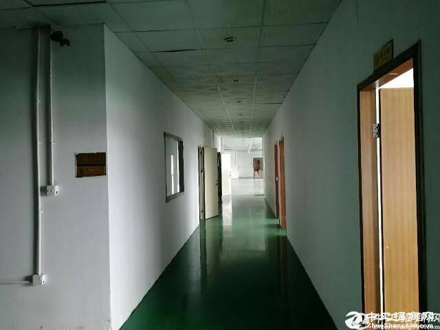 石岩汽车站附近2万平米红本厂房招租300平起分带装修