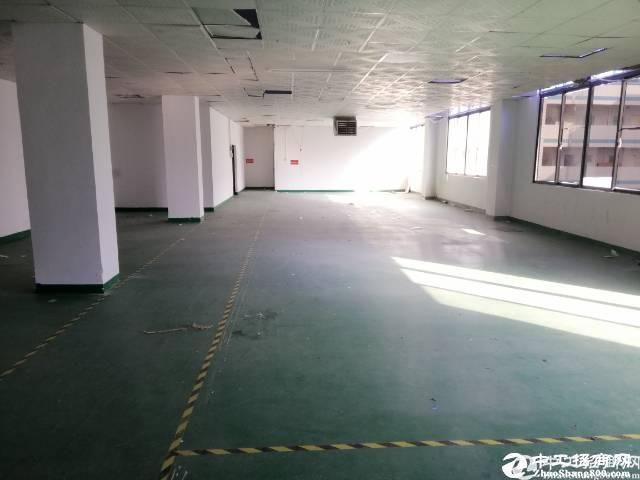 坪山坑梓新出原房东带装修楼上400平方红本厂房出租