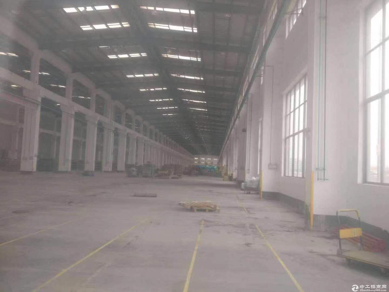 坑梓主干道边大型钢构厂房总面积30000平方出租,有红本