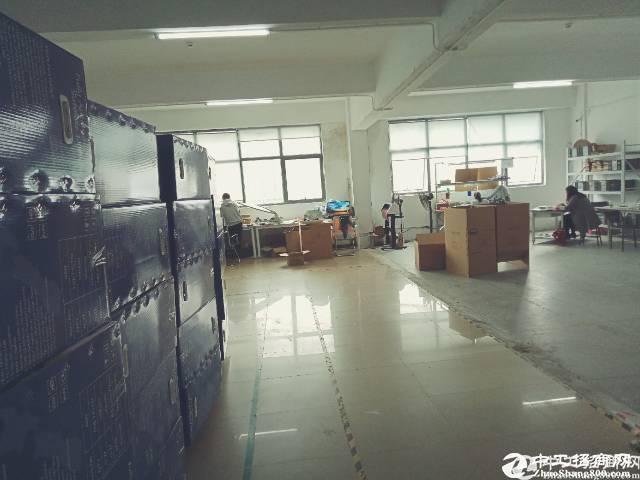 [西乡厂房]西乡107国道旁1000平米厂房精装修入驻即可生产
