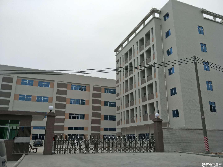 西城工业区独门独院标准厂房10000平方招租(空地大),可分租500