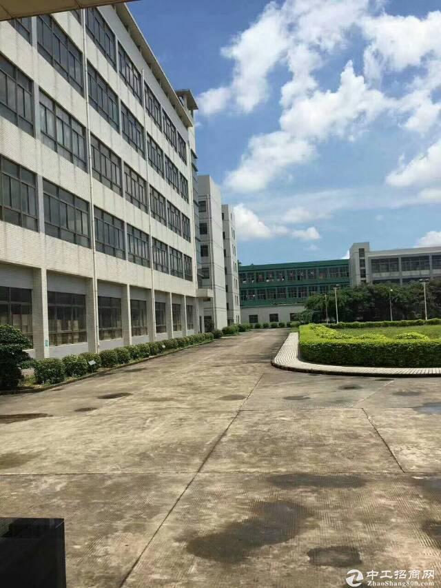 坪山大工业区原房东厂房2楼5200平米厂房出租,可分租