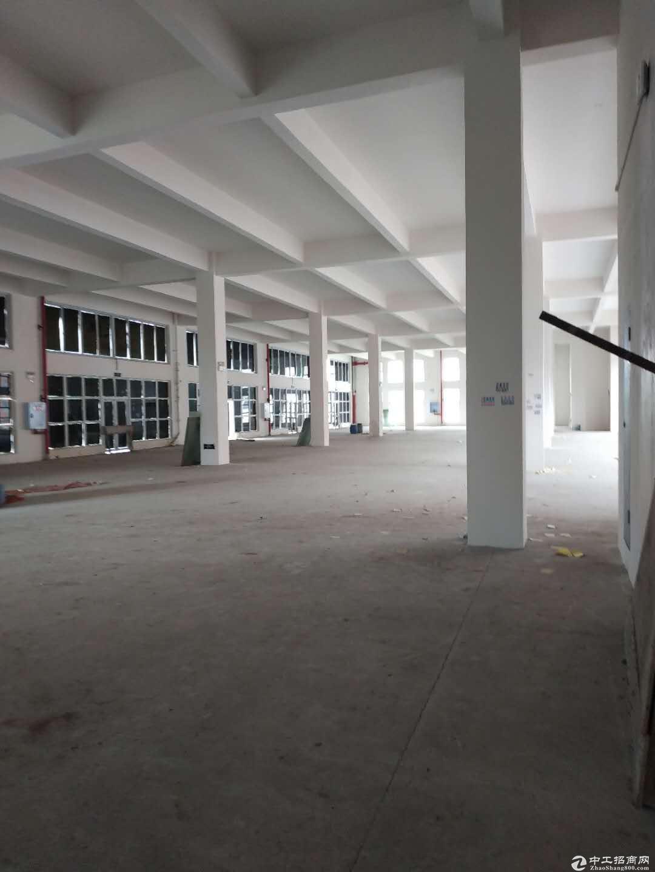 急售九龙坡陶家标准厂房现房1400平方价格优惠无行业限制