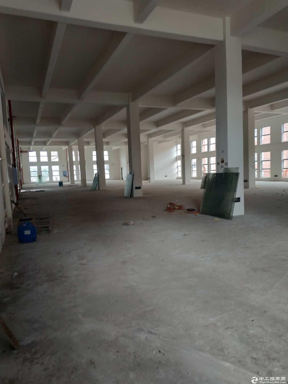 急售九龙坡陶家标准厂房现房1400平方价格优惠无行业限制-图2