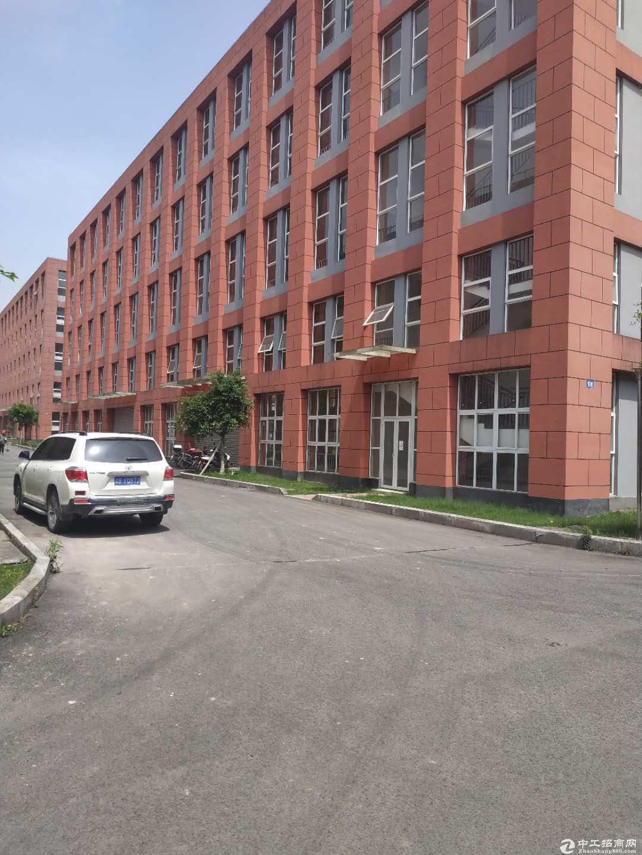 急售九龙坡陶家标准厂房现房1400平方价格优惠无行业限制-图5