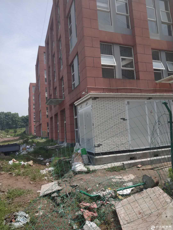 急售九龙坡陶家标准厂房现房1400平方价格优惠无行业限制-图4
