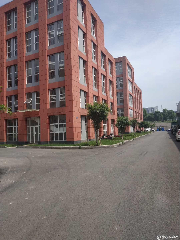 急售九龙坡陶家标准厂房现房1400平方价格优惠无行业限制-图3