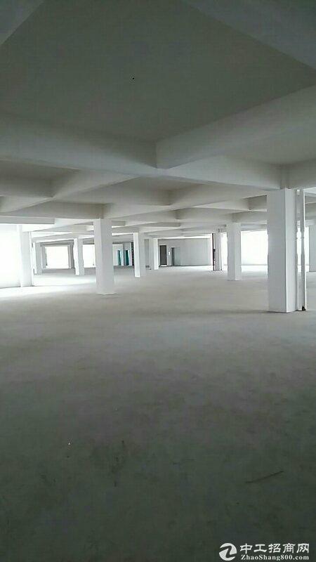 东西湖走马岭独门独院标准框架厂房出租,3万平