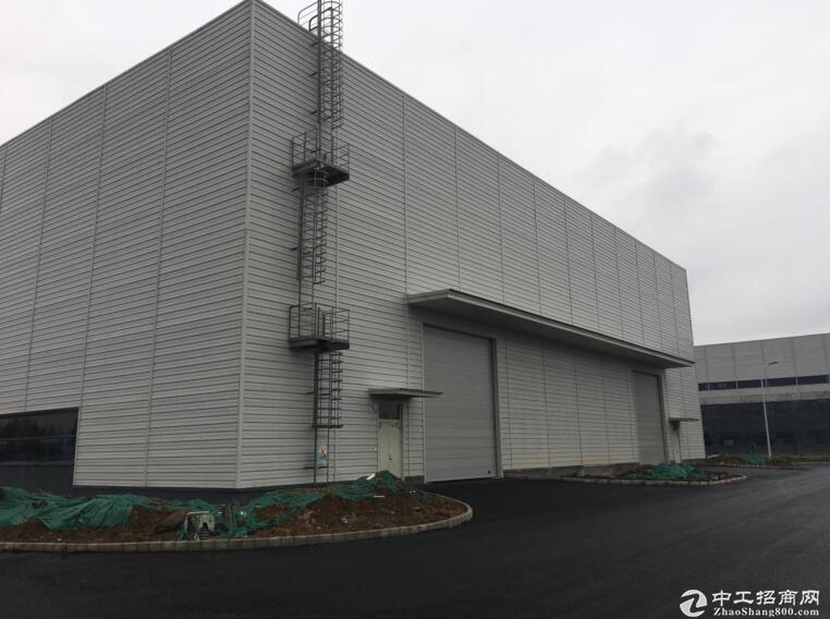 吴家山临空港经济技术开发区,厂房出租,可做重工行业