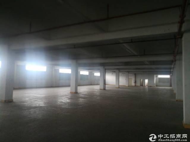 新圩塘吓红本标准厂房楼上2200平招租现成装修面积实在