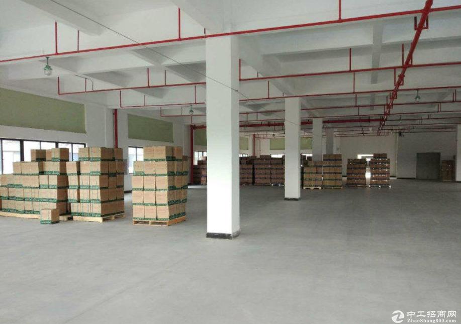 大亚湾龙光城附近楼上800平标准厂房出租带电梯有装修
