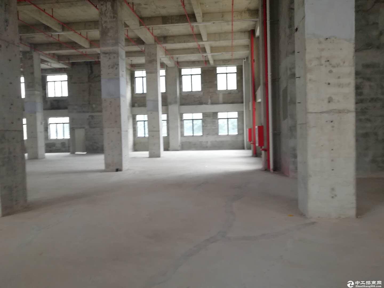 坂田8700平独栋独院标准红本厂房出租生物高新优先