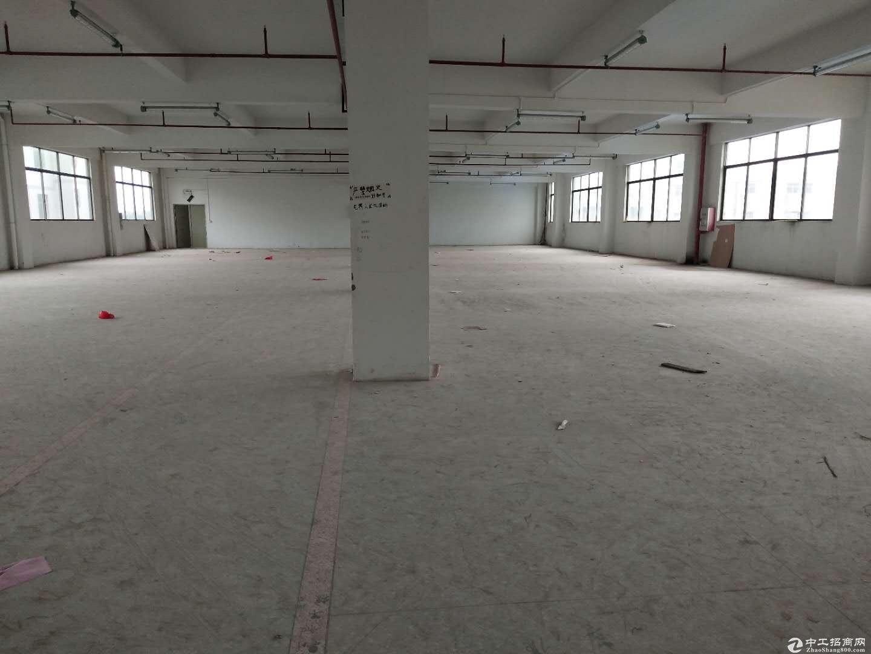 大亚湾工业园新出1100平现成装修厂房招租适合无污染行业