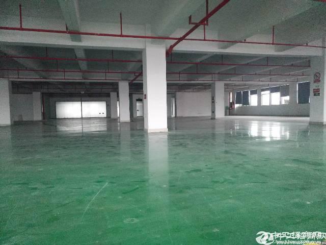 西乡新出装修厂房650平米出租,