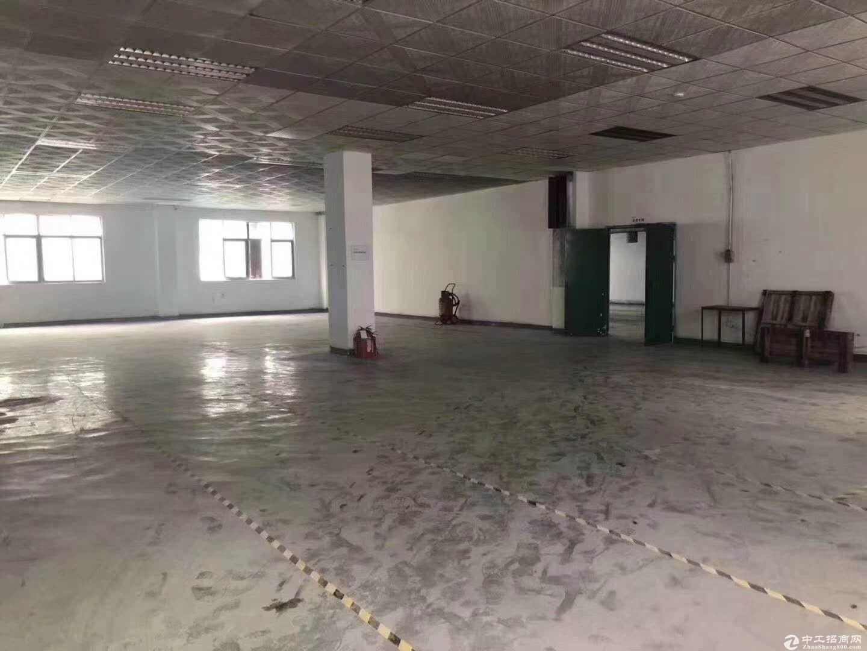 平湖23000平方原房东独院标准红本厂房出租地铁口