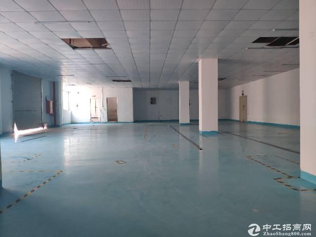 西乡带装修厂房300平出租,有装修办公室