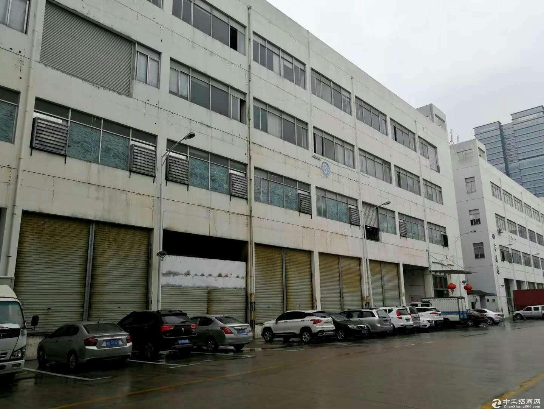 出租坂田上雪独院原房东红本带装修一楼3000平米