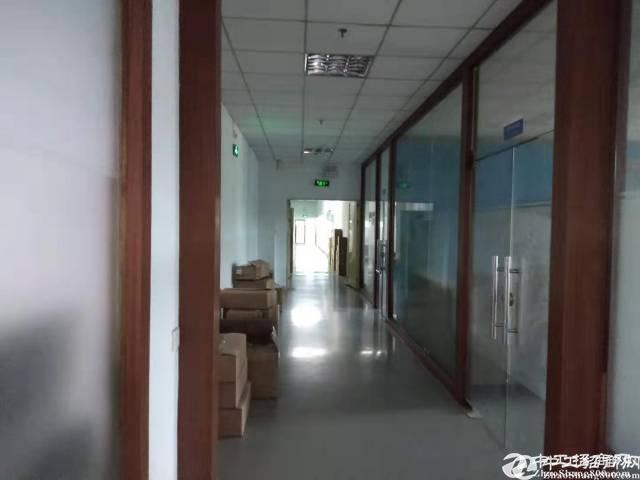 布吉丹竹头原房东2楼整层1623平可分租精装修厂房出租