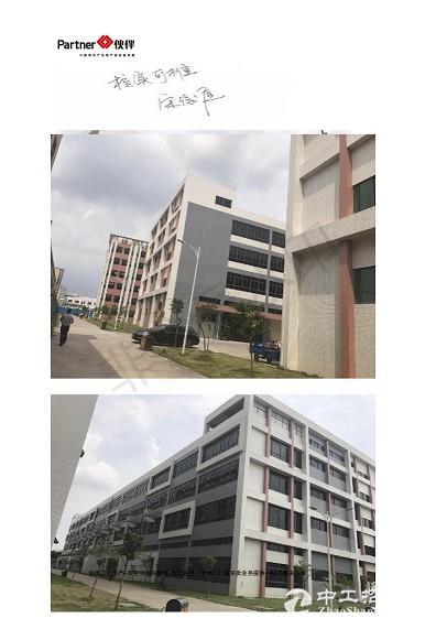 深圳后花园东莞 临深区域 一万平方米以上  国有证红本厂房出售推荐-图7