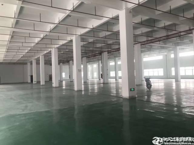 黄江 塘厦临深 6000㎡ 8500㎡12000㎡红本甄选厂房推荐