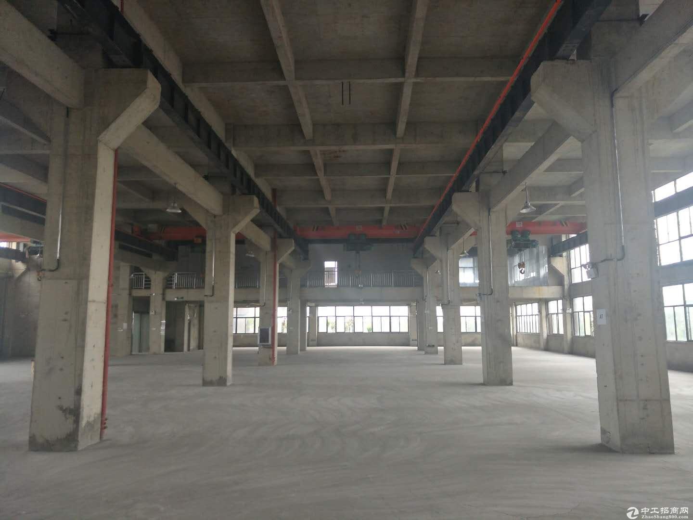 黄陂厂房30000平米,带行车,生产加工仓储,配套食堂