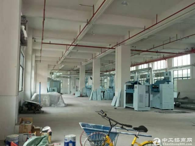 花东镇金田工业区原房东分租3-4楼3000方
