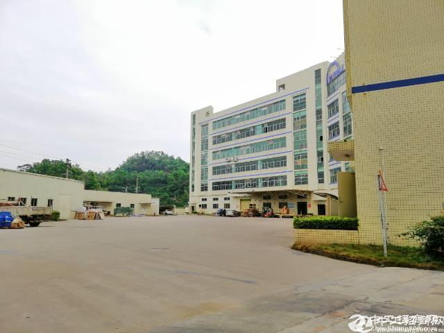 布吉5层1800平带消防喷淋可做电商仓库  原重工业厂房