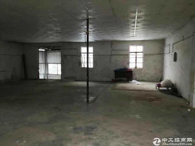 新圩原房东单一层钢构厂房600平