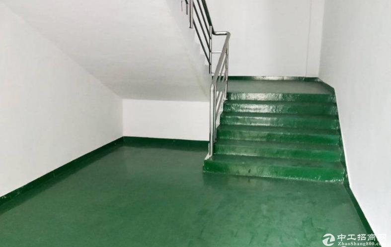 横岗六约楼上500至2000平厂房仓库带地坪漆大小可分