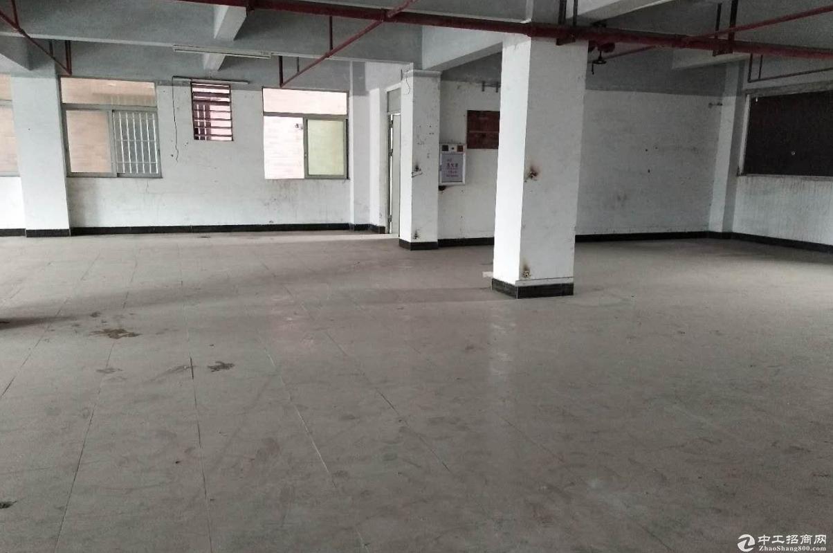 塘厦石马600平米独栋厂房仓库办公出租
