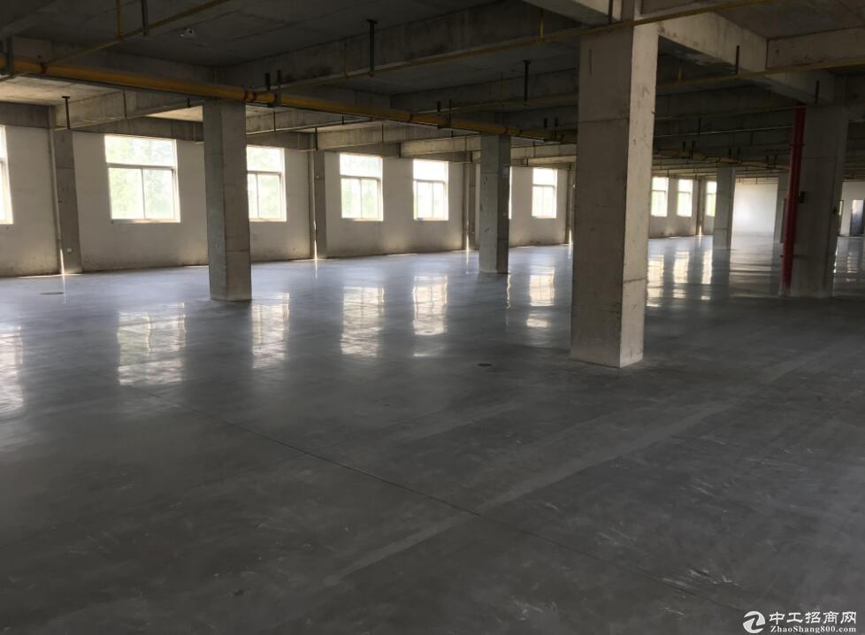 黄陂武湖三里桥工业园,标准厂房特价出售,可贷款分期