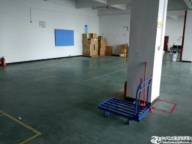 平湖辅城坳工业区独院厂房三楼整层1300平方,业主直租。有现