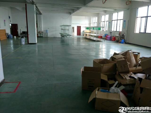 平湖辅城坳工业区独院厂房三楼整层1300平方,业主直租。有现-图3