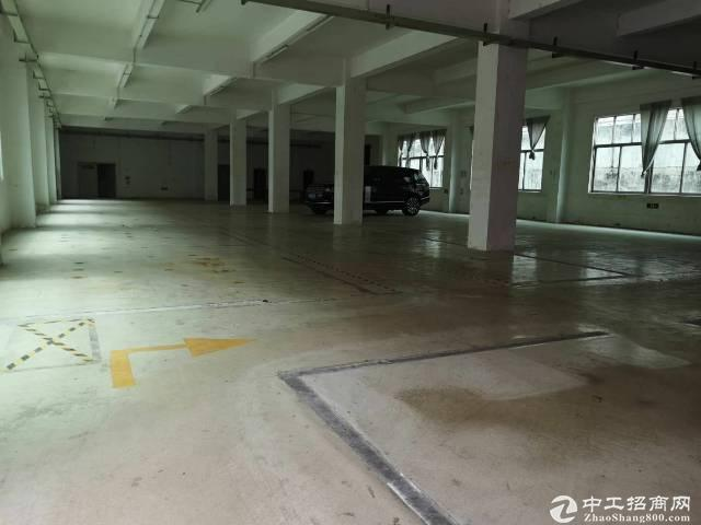 平湖良安田,一楼,700平方厂房出租-图2