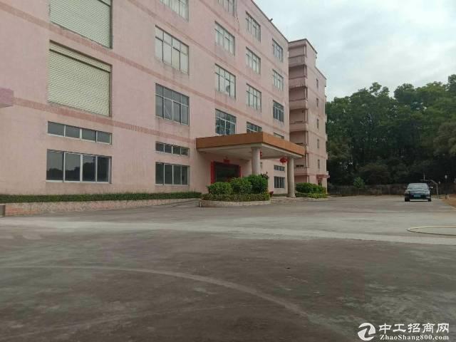 平湖良安田,一楼,700平方厂房出租-图3