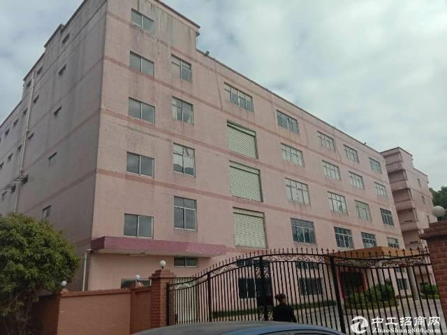 平湖良安田,一楼,700平方厂房出租-图4