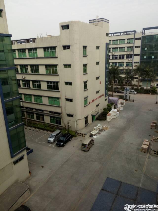 水乡占地7000建筑12000全新厂房急售