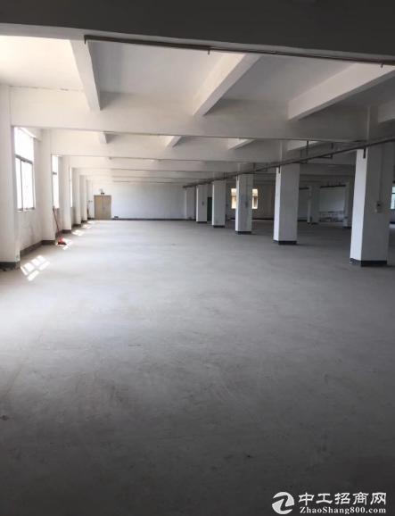 龙岗嶂背楼上原房东1400平厂房仓库出租,大小分租