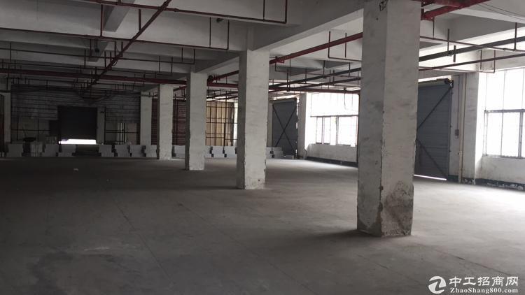 龙华中华路现出1楼物流厂房540平,价格优惠