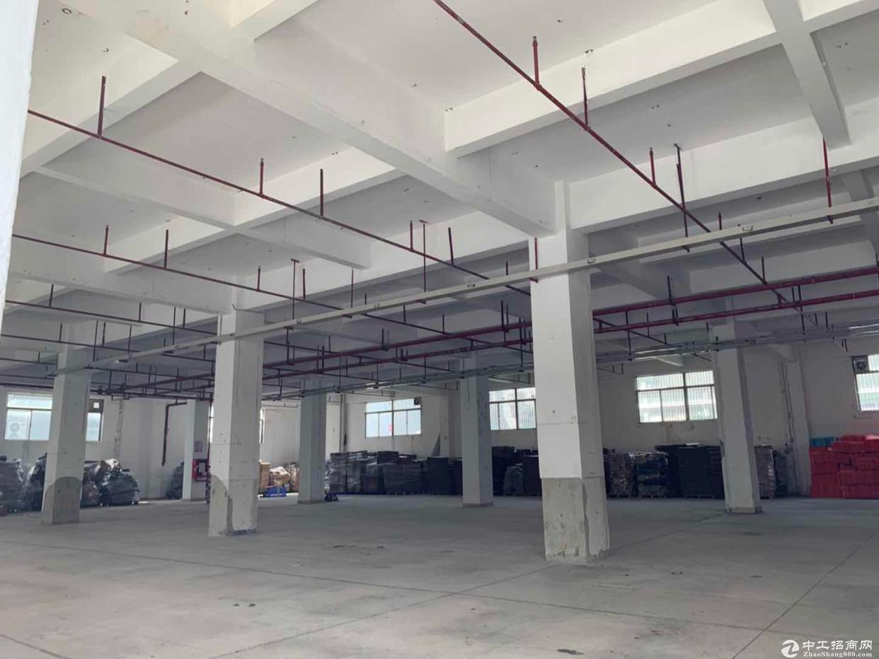 布吉李朗主干道旁边标准厂房一楼出租,原房东1500平