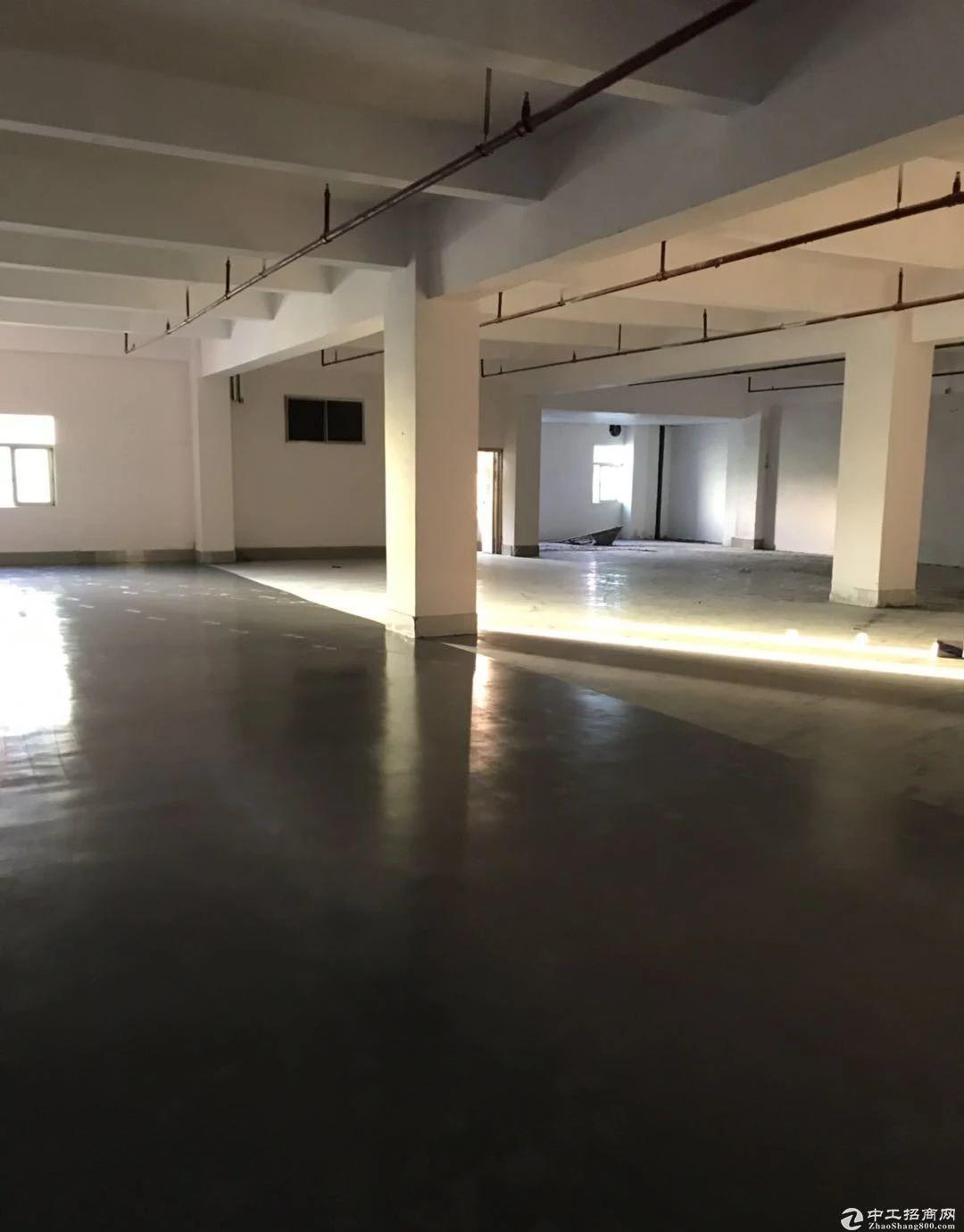 木棉湾独院400平米厂房出租