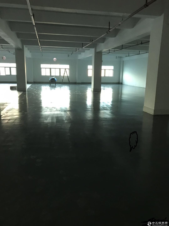 布吉标准厂房800平花园式厂房仓库出租