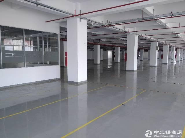 旧水坑有红本独院精装修厂房1200平米招租,可分租